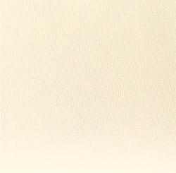 Acquerello avorio 240 g