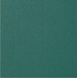 Conqueror texture evergreen 250g